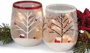 Cardinal Glass Jar Light Set