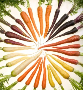 Carrots of Many Colors for Roasting