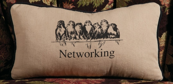 Birds on Phone Line Pillow