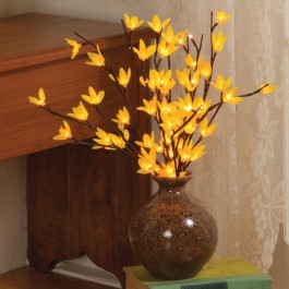 Forsythia Lights