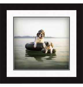 Floating Saint Bernards Print