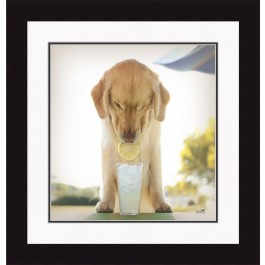 Dog With Lemonade Print