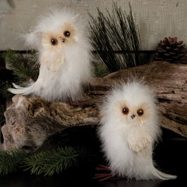 Snowy Owls Set