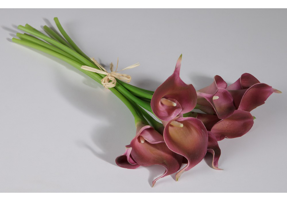 Calla Lily Stems (in purple)