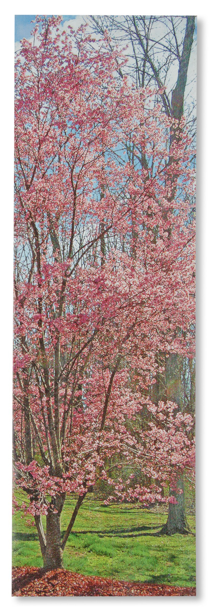 Cherry Blossom Wall Plaque