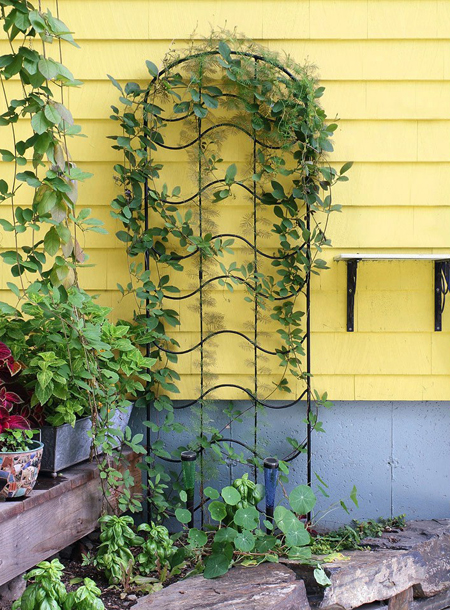 Summer Waves Garden Trellis and Extension | Sturbridge Yankee Workshop