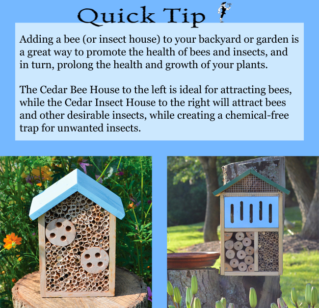 Quick Tip: Bee and Insect Houses | Sturbridge Yankee Workshop