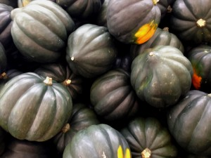 Acorn Squash | Sturbridge Yankee Workshop