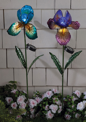 Iris Solar Light Stake | Blue and Purple | Sturbridge Yankee Workshop