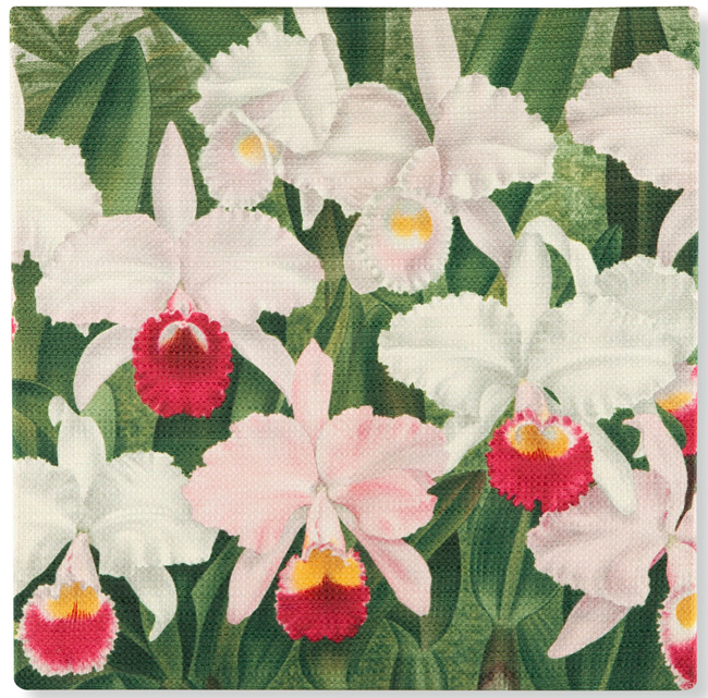 Orchid Blooms Wall Art | USA | Sturbridge Yankee Workshop
