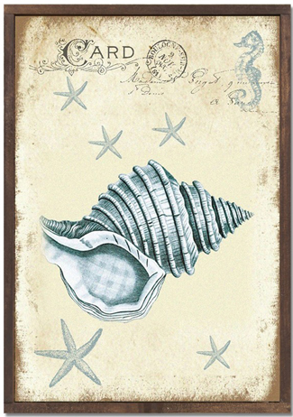 Rustic Seashore Conch Print | USA | Beach Decor | Sturbridge Yankee Workshop